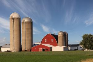 thumbnail of Buying or Building a Barn Can Provide Much Needed Storage